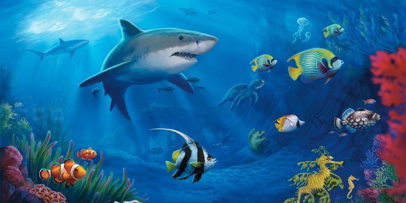 Panduan Bermain Judi Tembak Ikan